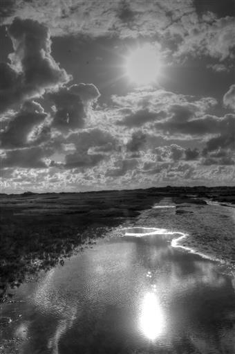 Insel Texel