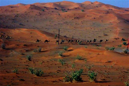 Eine Karawane in der Wüste beobachtet