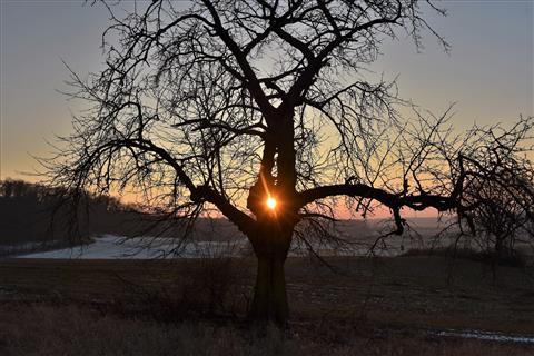 Sonnenuntergang in der Wetterau