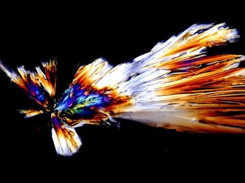 Glukose-Kristall im polarisierten Licht