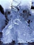 Wasser, Schnee und Eis