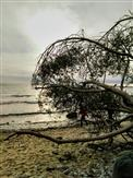 Ostseestrand bei Mukran