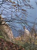 Kreidefelsen am Königsstuhl