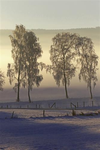 frost im sauerland 1
