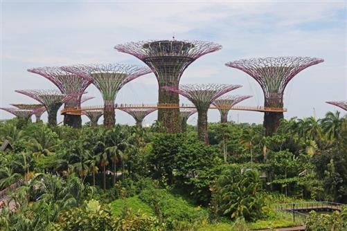 künstliche natur in singapur