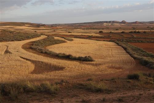 steppe bei belchite