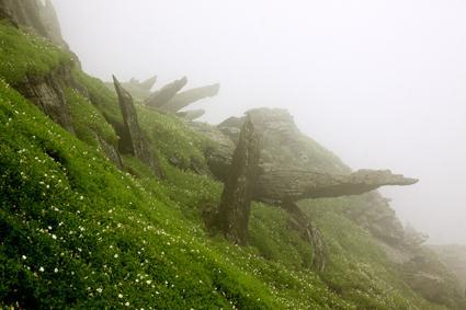 skellig im nebel
