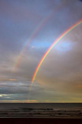 regenbogen wexford