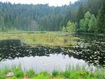 huzenbacher see