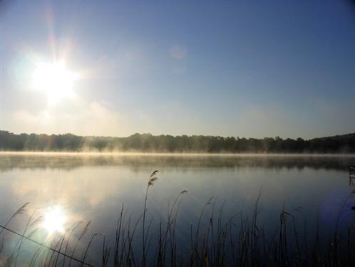 Morgen am Sacrower See