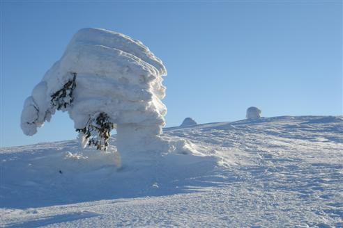 2t Schnee - Achtung Bruchgefahr!