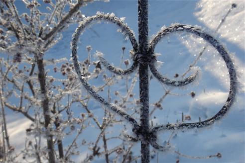 Winterimpression zum Valentinstag