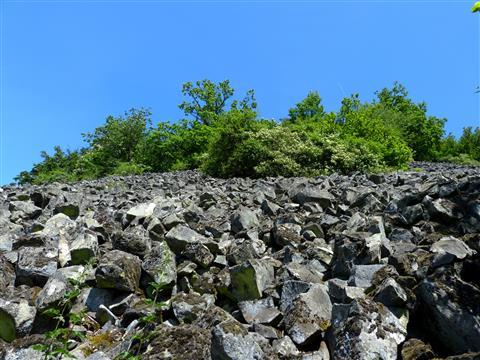 Basaltblockmeer am Rauhen Kulm