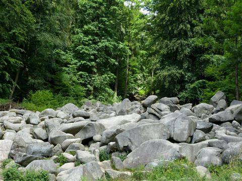 Granit-Felsenmeer bei Reichenbach Odenwald