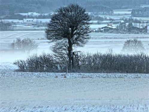 Winterlandschaft bei Weidenbach Mittelfranken