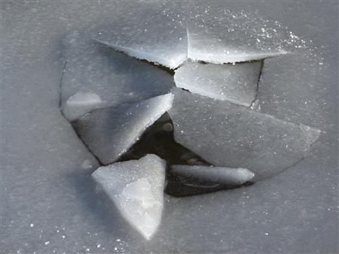 Eisaufbruch durch Biber