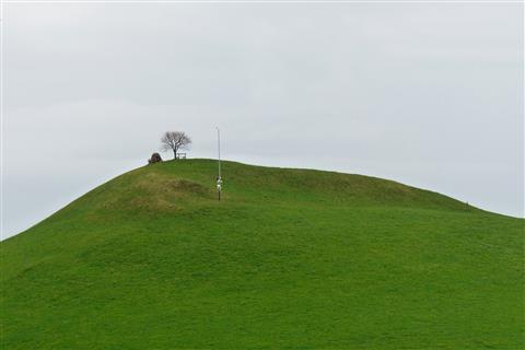 Gipfelbaum