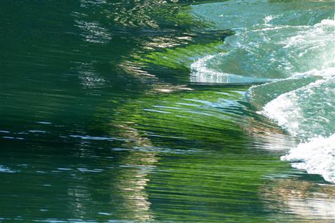 Wunderschön klares Flusswasser der Aare