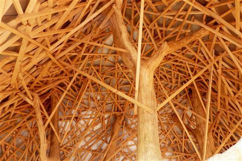 Holzkonstruktion in der Schweiz