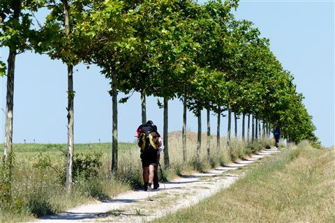 Camino Licht- und Schattenweg