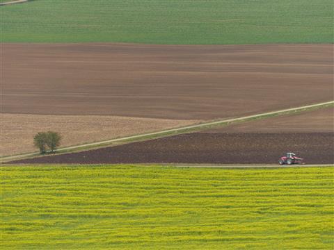 Feldbestellung im Herbst