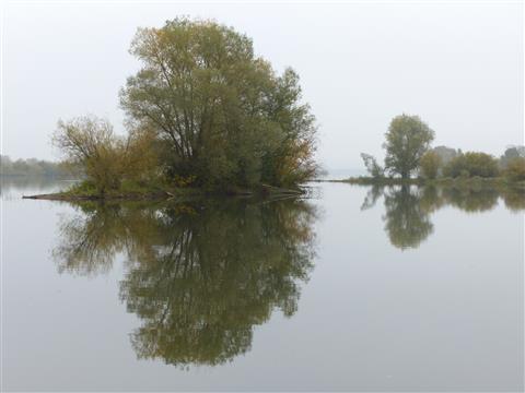 Spiegelung im Altmühlsee