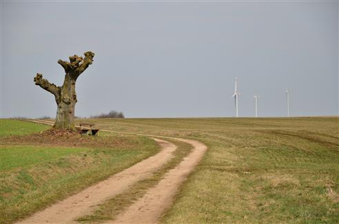 Monumente in der Natur-mit und ohne Flügel