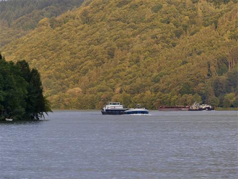 Begegnung auf der Donau