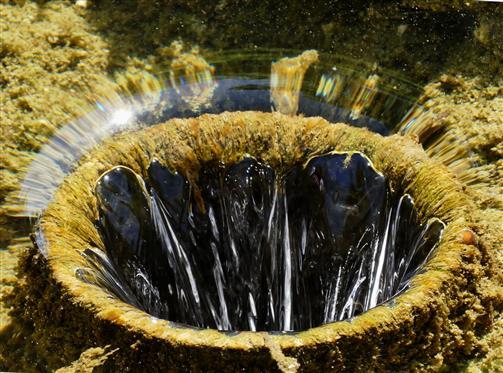 Wasserablauf