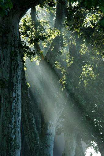 flutendes Licht