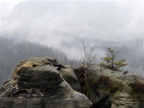 Elbsandsteingebirge Kuhstall Ausblick