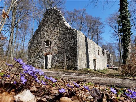 Ruinenkapelle St Ulrich auf dem Uhlberg bei Treuchtlingen