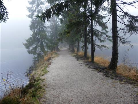 Dammweg zwischen den Fichtelseeteilen