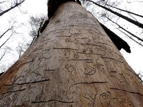 Fränkischer Baumobelisk