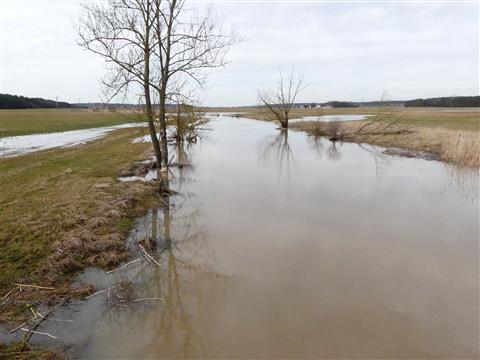 Altmühlhochwasser Flußaufwärts bei Haag