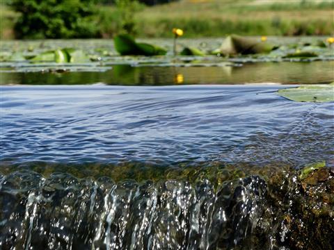 Wasserkante