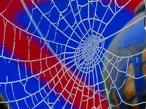 Spinnengestrickt