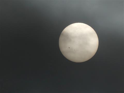 Sonne mit Sonnenflecken-2786 der Große-durch Hochnebel fotografiert