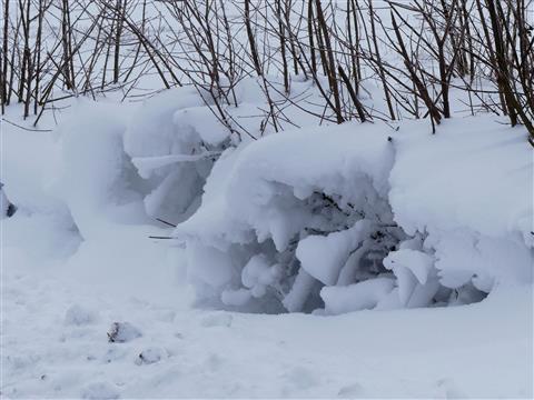 Schneewehenhöhle mit Herz
