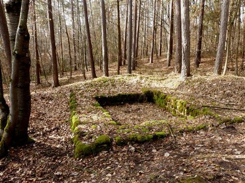 Limesturmfundament im Filchenharder Forst