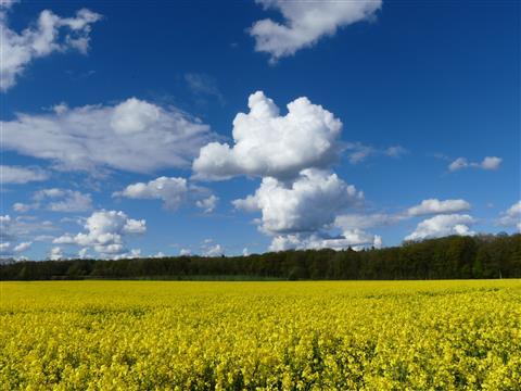 Wolken über dem Land