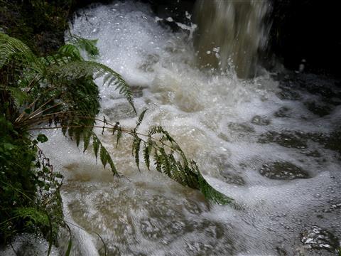 am kleinen Wasserfall