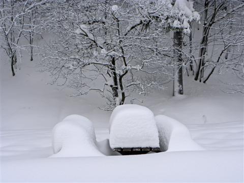 verschneite Ruhebänke bei Oberhof/Thüringen