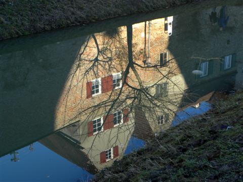 Spiegelung im Stadtgraben in Donauwörth