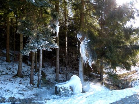 Eisbrunnen bei Bammersdorf
