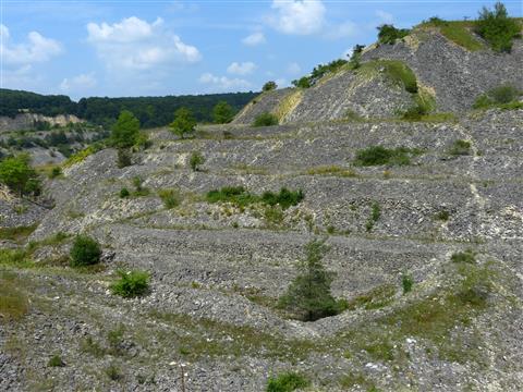 alter Steinbruch Mörnsheim