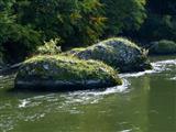 Felsen im Donaudurchbruch