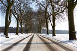 Winterstraße ohne Salzstreuung
