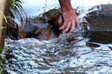 Bewässerungsregulierung von Hand