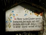 schöner weiser Spruch